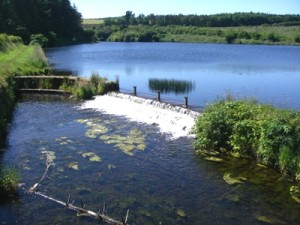 South Woodburn Resivoir. According to population review, the greater belfast area has a population of approx. 585,000 inhabitants, making it the 11th largest conurbation in the UK. (image source: doeni.co.uk)
